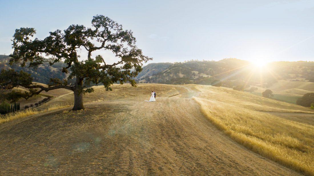 Gorgeous Vineyard Wedding at Taber Ranch Vineyard - Amid Films